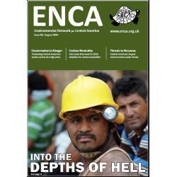 Newsletter 61: August 2014