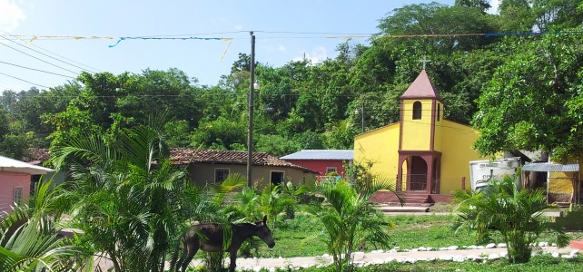 San Juan – Indigenous Farming Cooperative's Defiant Stance against Land-grabbing & Murder