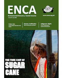 ENCA 67: The True Cost of Sugar Cane